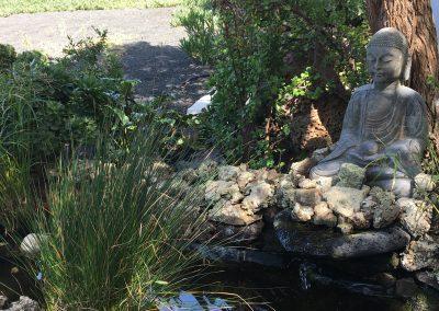 Buddha pond