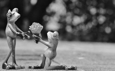 Konfliktlösung durch vergeben, vergessen, verzeihen?